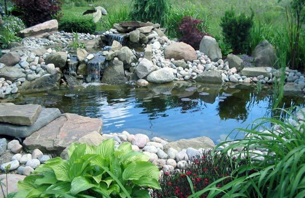 Laghetti ornamentali da giardino for Piante da laghetto