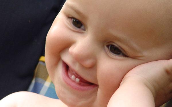 Nascita dei primi dentini